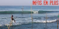 Sri Lanka : quelques précisions (transport, hébergement)