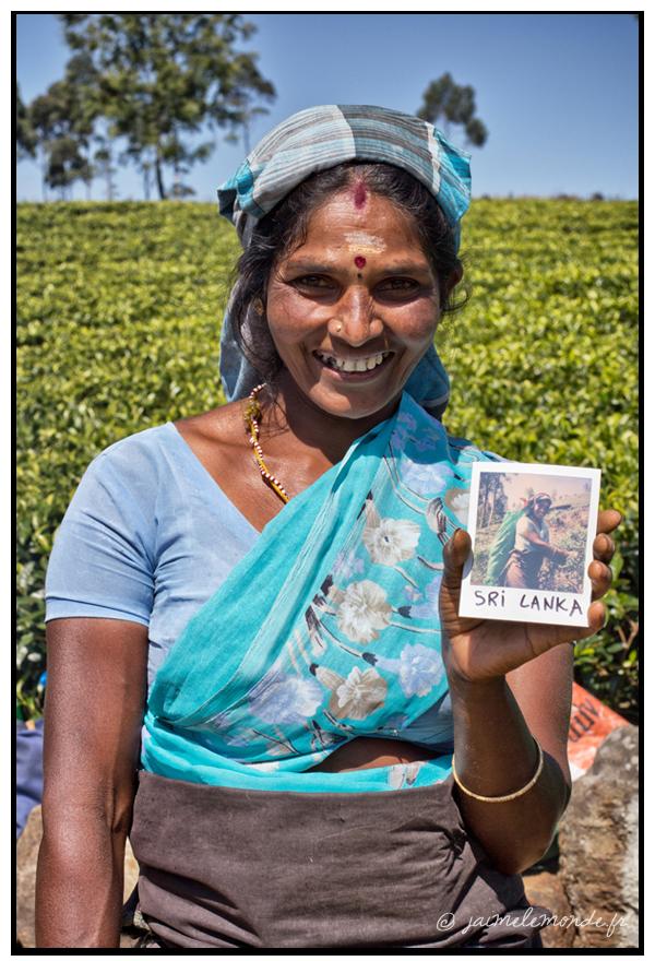 6 - cueilleuse de thé - Sri Lanka