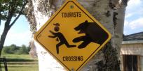 Nouveau Brunswick : l'homme qui parle aux ours !