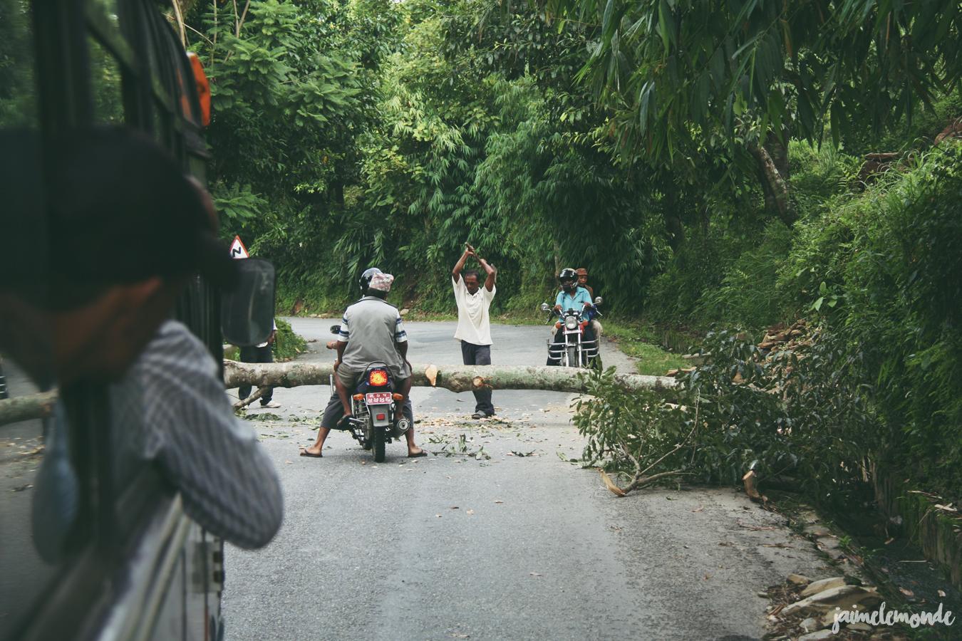 Blog voyage - 50 photos au Népal - ©jaimelemonde (18)