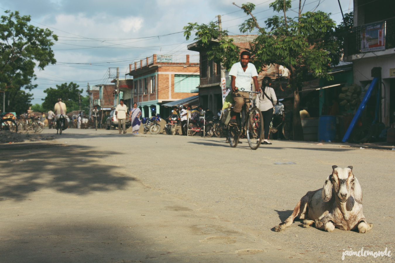 Blog voyage - 50 photos au Népal - ©jaimelemonde (19)