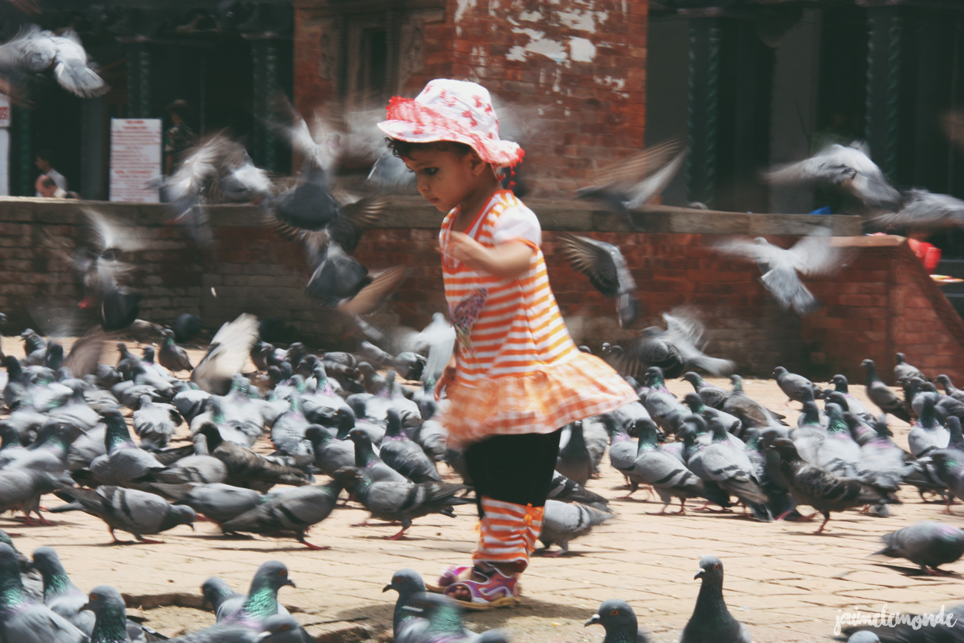 Blog voyage - 50 photos au Népal - ©jaimelemonde (2)