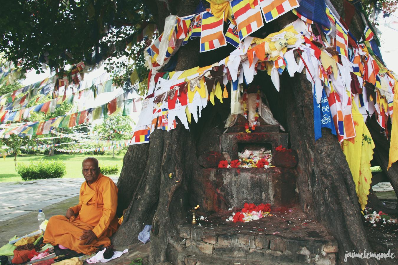 Blog voyage - 50 photos au Népal - ©jaimelemonde (20)