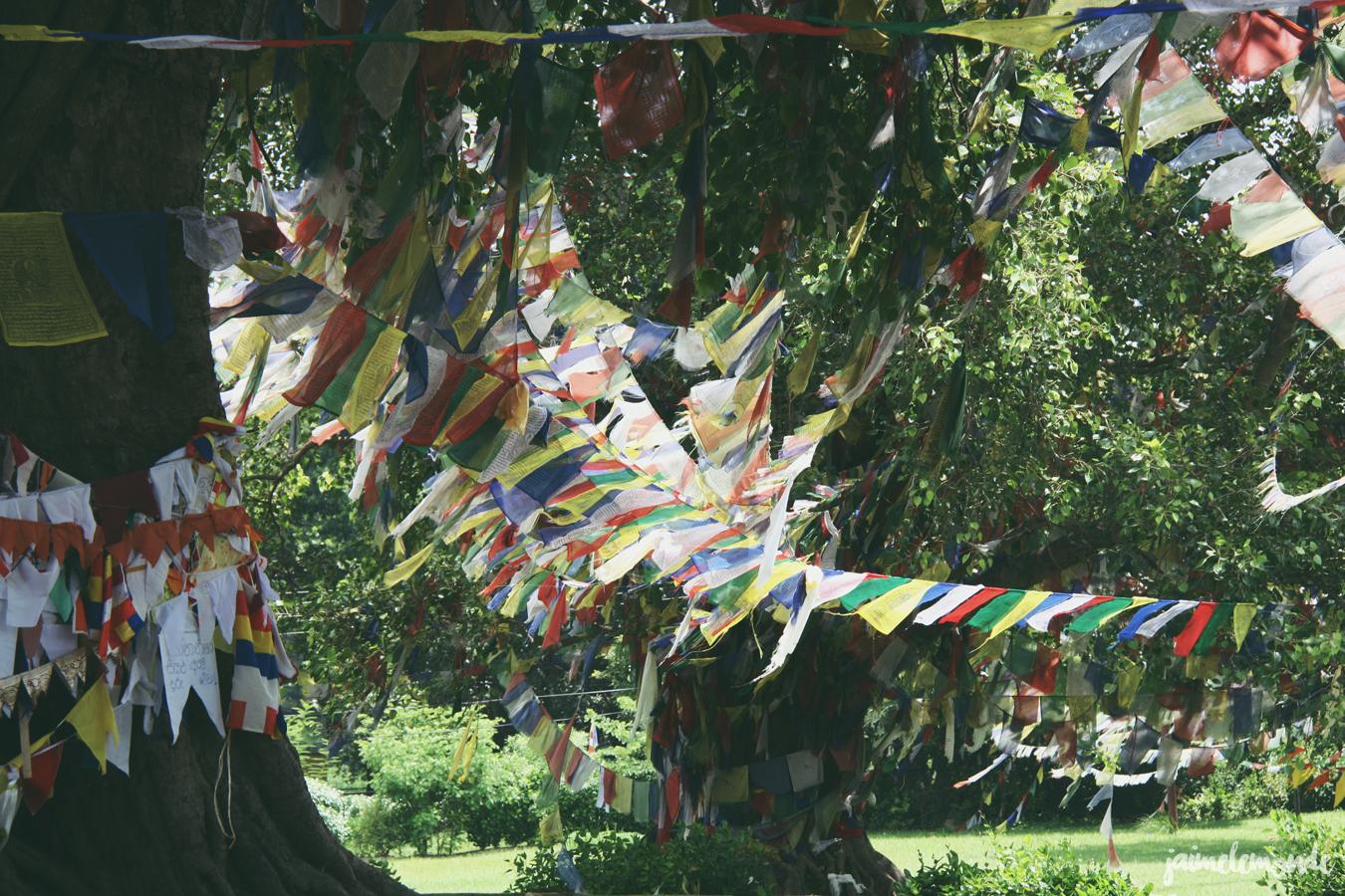 Blog voyage - 50 photos au Népal - ©jaimelemonde (21)
