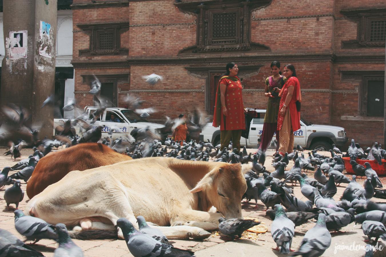 Blog voyage - 50 photos au Népal - ©jaimelemonde (3)