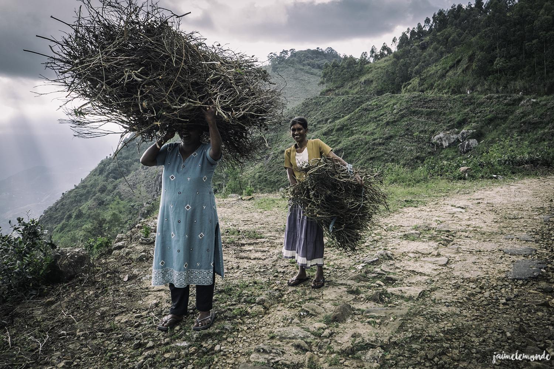 Haputale - Voyage au Sri Lanka (20)