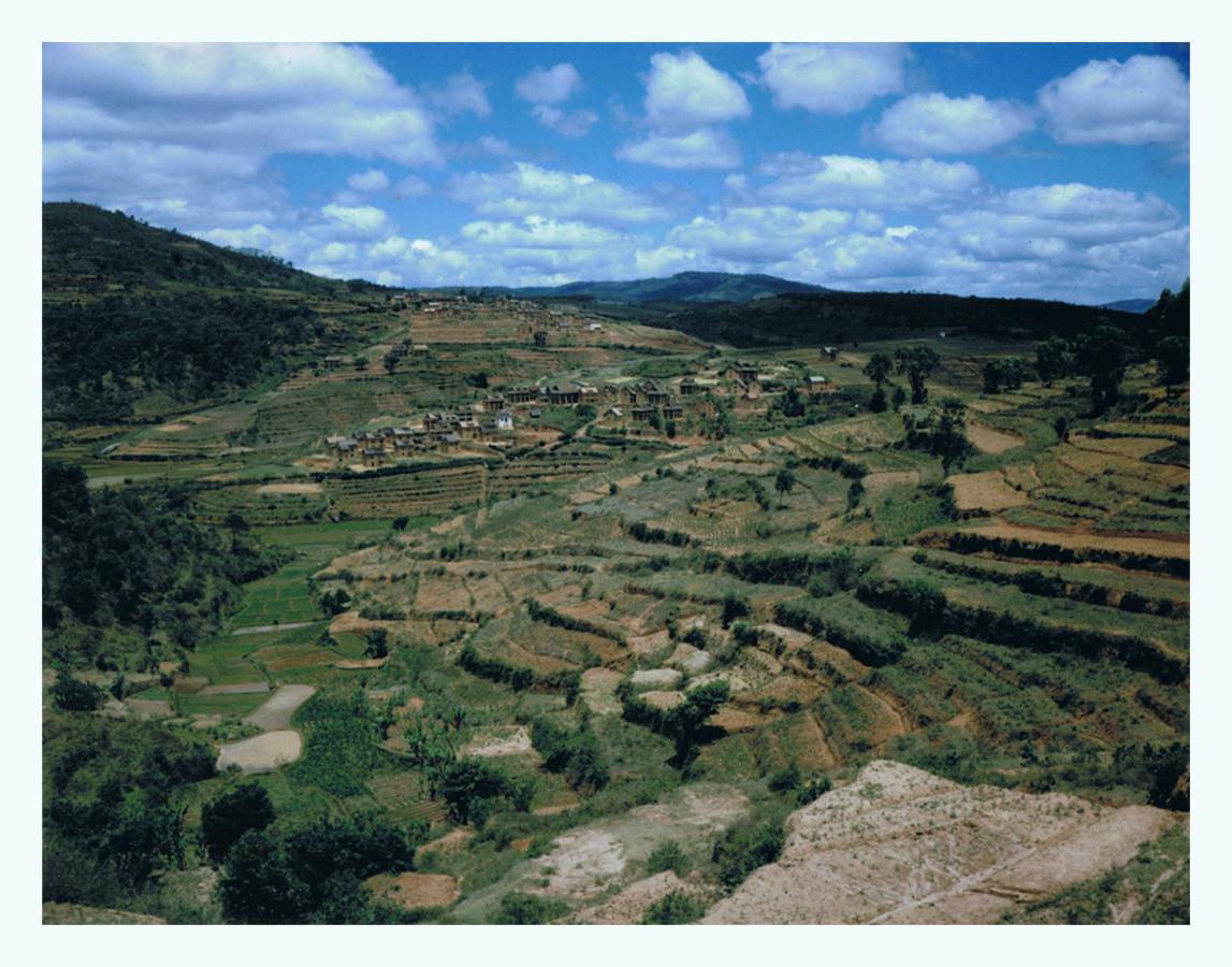 madagascar-jaimelemonde-fr-mamiya-press-film-fp100c-4