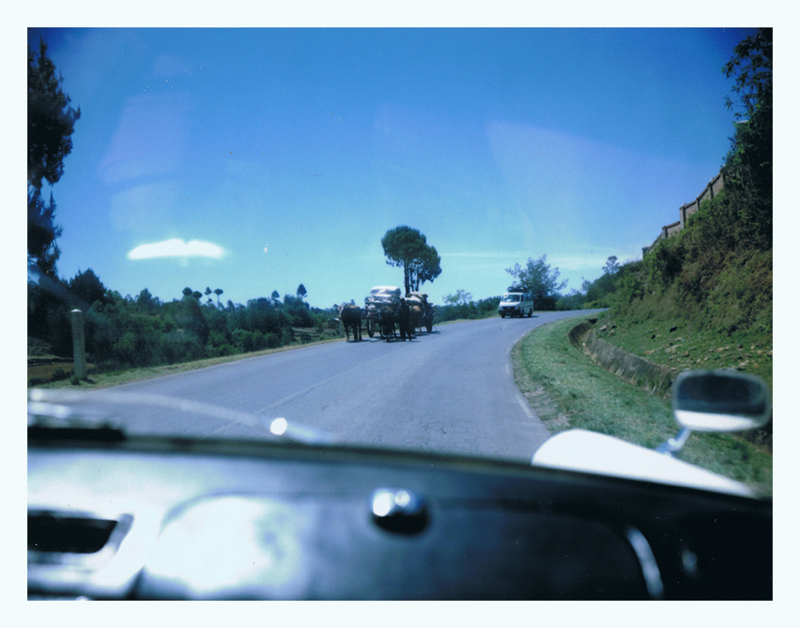 madagascar-jaimelemonde-fr-mamiya-press-film-fp100c-8