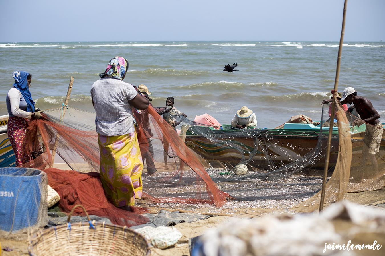 negombo-marche-aux-poissons-voyage-au-sri-lanka-jaimelemonde-10