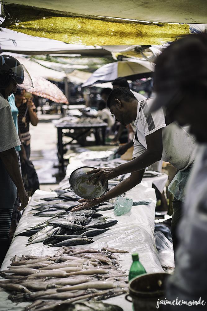 Negombo - Voyage au Sri Lanka (10)