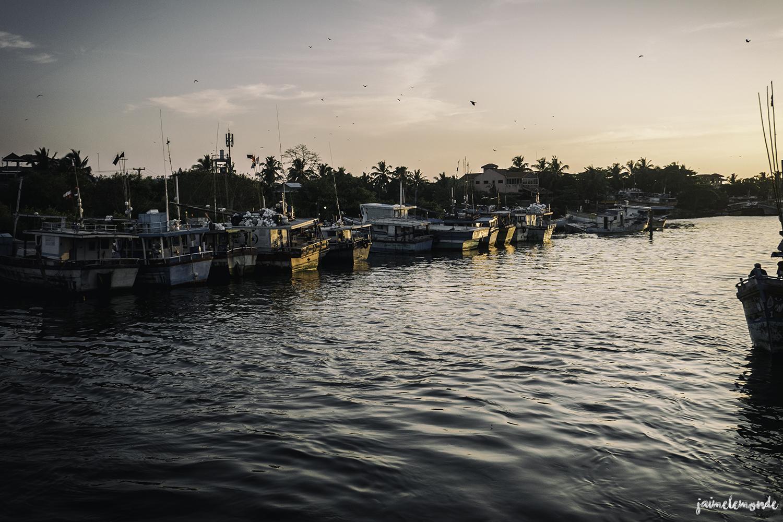 Negombo - Voyage au Sri Lanka (15)
