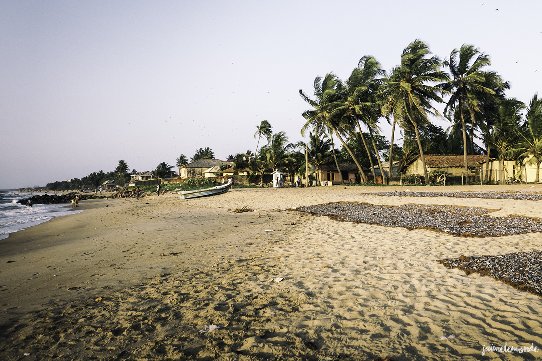 Negombo - Voyage au Sri Lanka (22)
