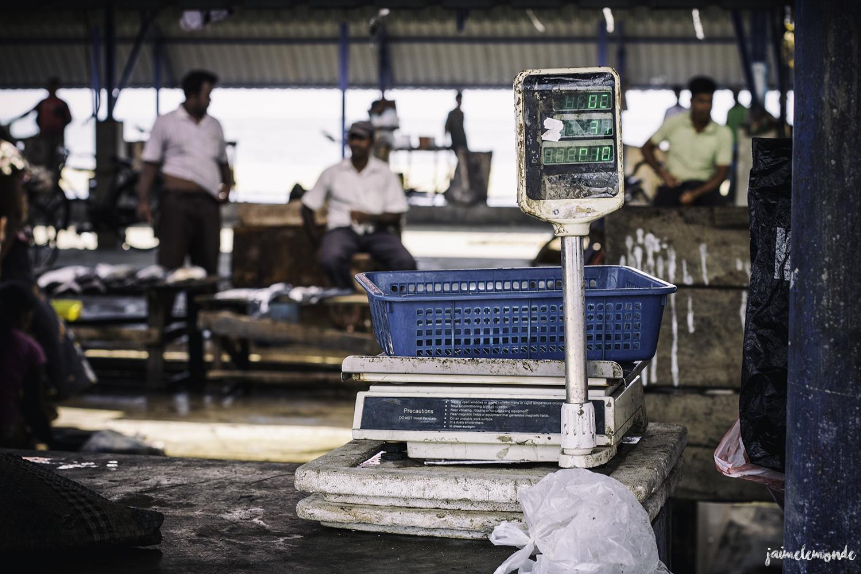Negombo - Voyage au Sri Lanka (6)
