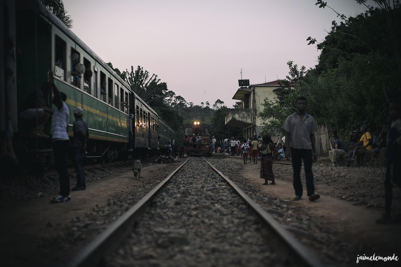 Train Grande Vibration (7)