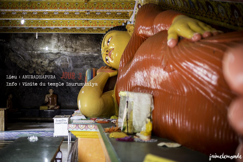 Voyage Sri Lanka - Itinéraire Jour 3 - 1 Anuradhapura - Visite du temple Isurumuniya - ©jaimelemonde