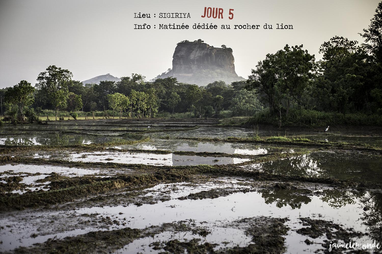 Voyage Sri Lanka - Itinéraire Jour 5 - 1 Sigriya - Matinée dédiée au rocher du lion - ©jaimelemonde