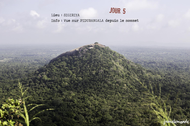 Voyage Sri Lanka - Itinéraire Jour 5 - 5 Sigriya - Vue sur Pidurangala - ©jaimelemonde