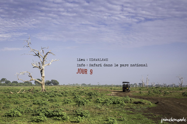 Voyage Sri Lanka - Itinéraire Jour 9 - 3 Udawalawe - Safari dans le parc national - ©jaimelemonde