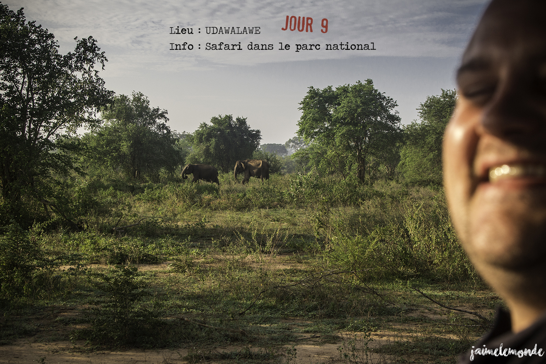 Voyage Sri Lanka - Itinéraire Jour 9 - 5 Udawalawe - Safari dans le parc national - ©jaimelemonde