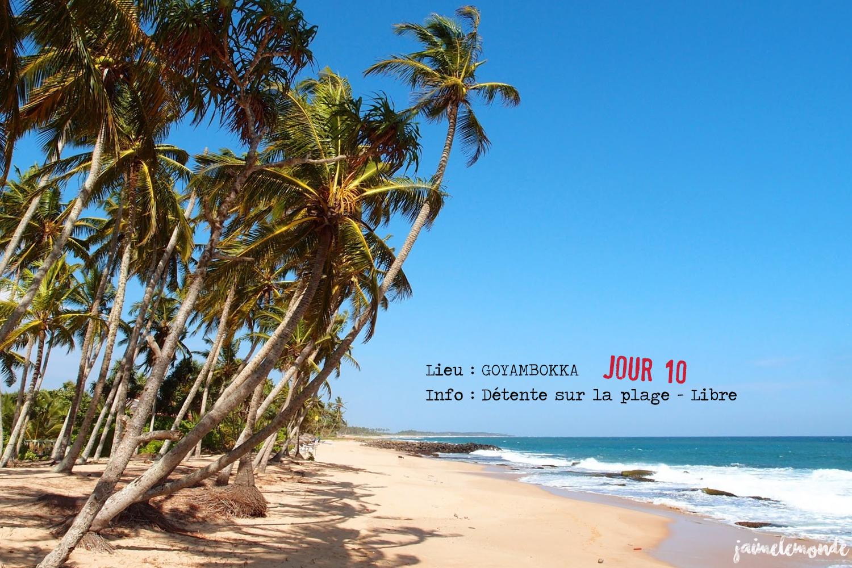 Voyage Sri Lanka - Itinéraire Jour 10 - 1 Goyambokka - Journée libre sur la plage - ©jaimelemonde