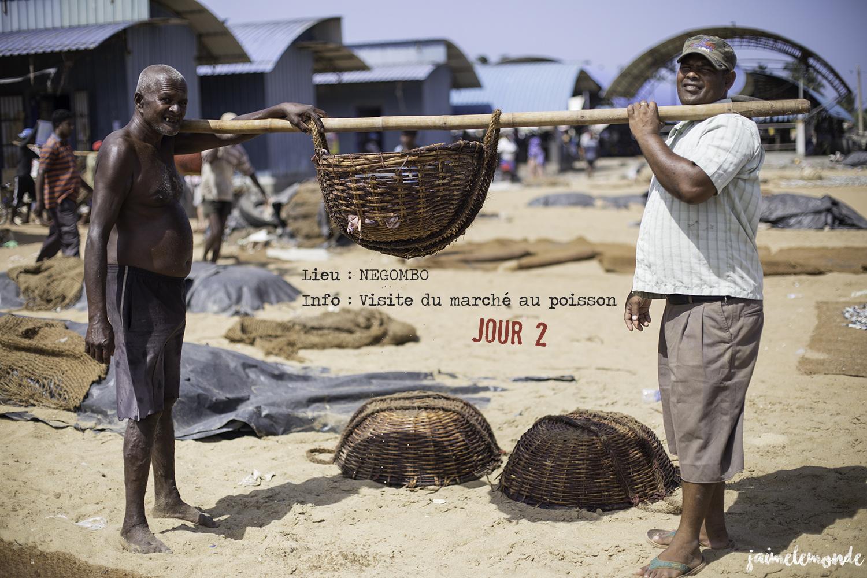 Voyage Sri Lanka - Itinéraire Jour 2 - 2 Negombo - Marché aux poissons séchés - ©jaimelemonde