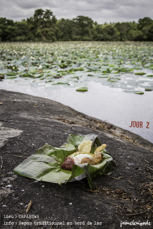 Voyage Sri Lanka - Itinéraire Jour 2 - 8 Yapahuwa - Repas traditionnel - ©jaimelemonde