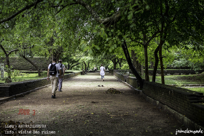 Voyage Sri Lanka - Itinéraire Jour 3 - 7 Anuradhapura - Visite des ruines du monastère Abhayagiri - ©jaimelemonde
