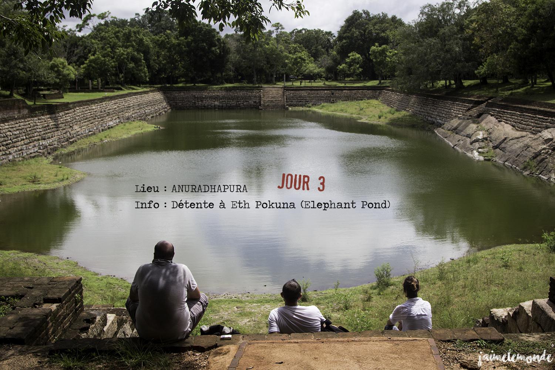 Voyage Sri Lanka - Itinéraire Jour 3 - 9 Anuradhapura - Détente à Eth Pokuna (Elephant Pond) - ©jaimelemonde