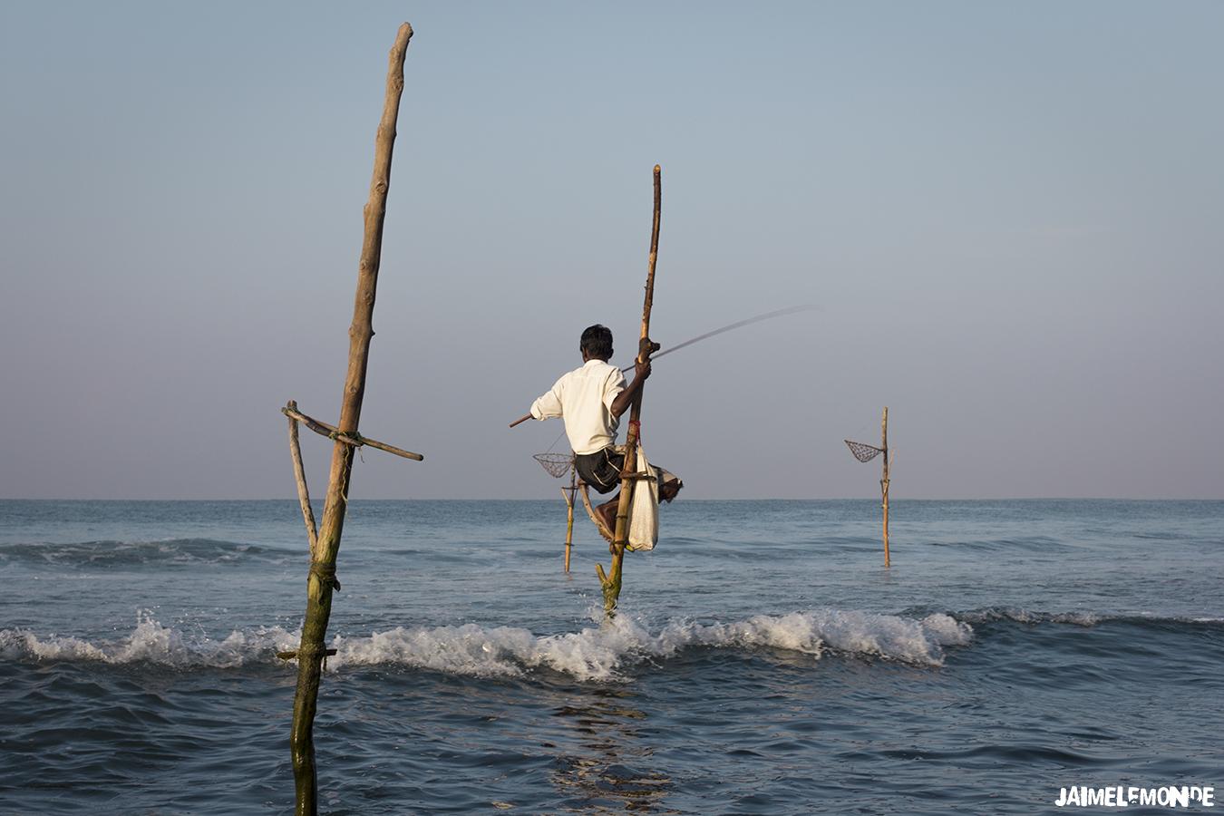 Voyage au Sri Lanka - ©jaimelemonde (16)