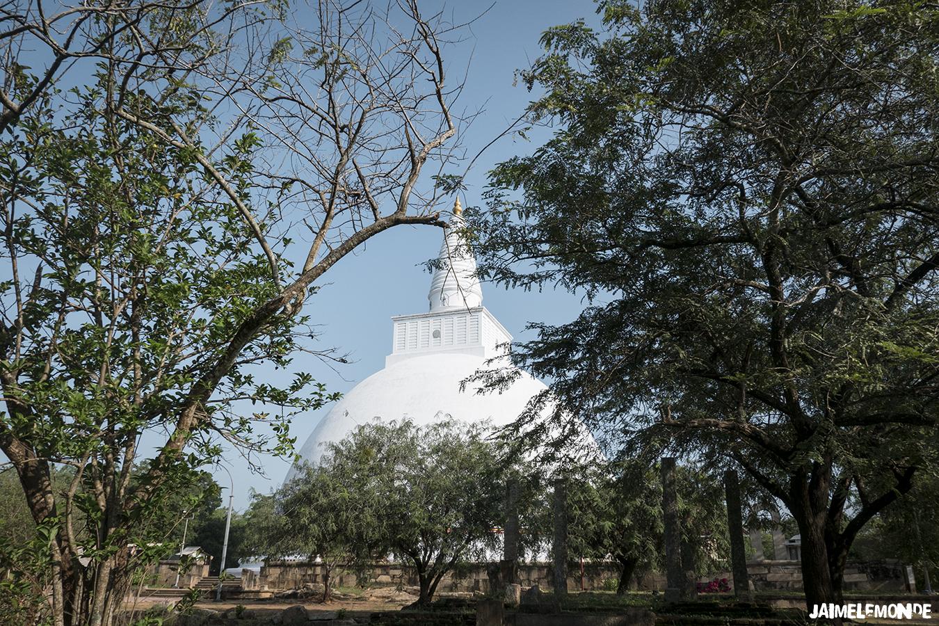 Voyage au Sri Lanka - ©jaimelemonde (21)