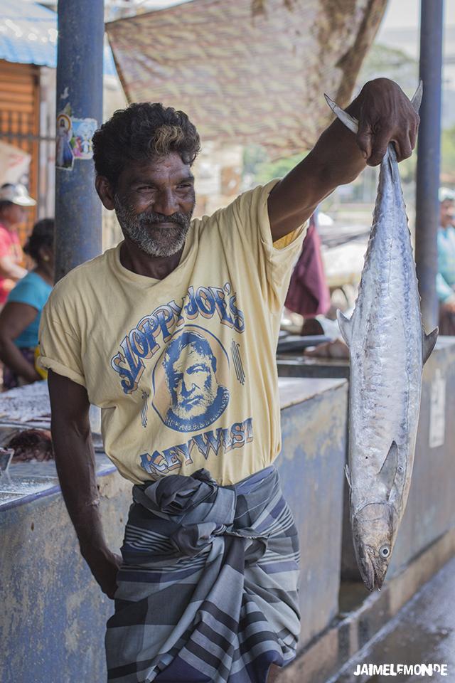 Voyage au Sri Lanka - ©jaimelemonde (4)