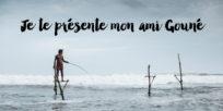 voyage-au-sri-lanka-weligama-peche-sur-echasse-guest-house-jaimelemonde-1