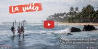 Vidéo : mes voyages en petit groupe au Sri Lanka !
