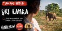 Voyage photo au Sri Lanka du 10 au 22 février 2020 !