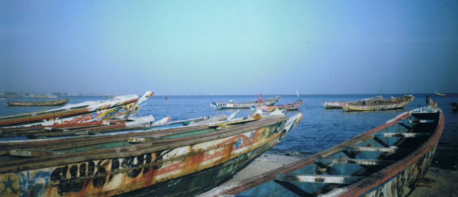 back-Senegal