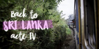 Retour au Sri Lanka, acte IV : les retrouvailles !
